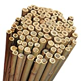 Elixir Gardens Strong Heavy Duty Professional Bamboo Plant Support Garden Canes | 4ft x 10