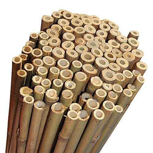 Elixir Gardens Strong Heavy Duty Professional Bamboo Plant Support Garden Canes | 6ft x 10