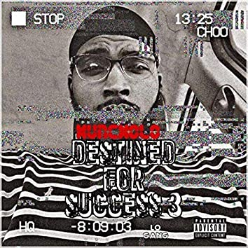 Destined for Success 3