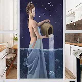Best aquarius stained glass Reviews