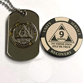 MyRecoveryStore AA or NA Monthly Dog Tag with Sobriety Chip (1-11)