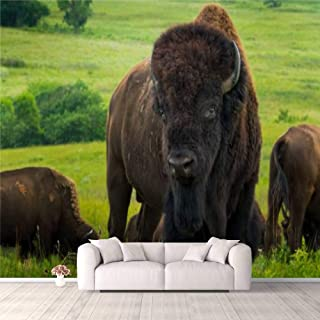 Modern 3D PVC Design Removable Wallpaper for Bedroom Living Room Impressive American Bison Portrait On The Kansas Plains W...