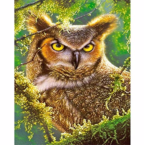 Berrd 5D DIY Diamond Painting Kit Runder Strass Owl on Tree Kreuzstich Mosaik Kunst Wanddekoration-Round Drill,45x60cm