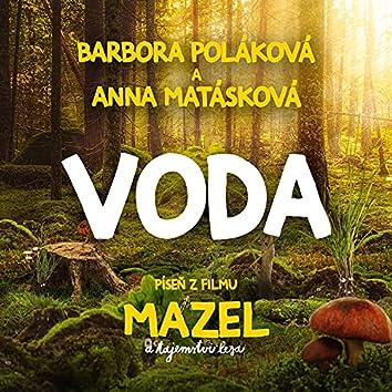 Voda (píseň z filmu Mazel a tajemství lesa)