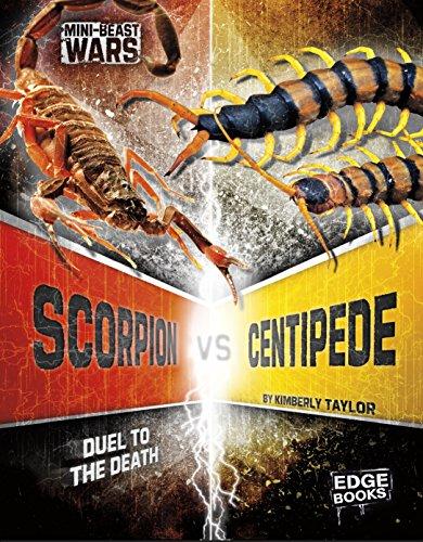 Scorpion vs Centipede (Bug Wars)