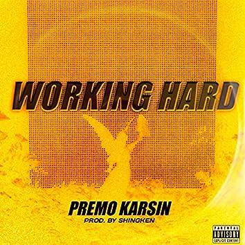 Working Hard (feat. Premo Karsin)
