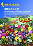 """Balkonkasten-Mix """"Pflegeleichte Sonnenkinder"""""""