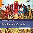 Rough Guide to Psychedelic Cumbia (Vinyl)