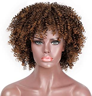 AISI HAIR Afro Curly Wig Short Kinky Curly Full Wigs with Bangs Mixed Brown and Blonde Synthetic Heat Resistant African Wigs for Black Women …