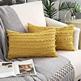 Woaboy Pack of 2 Decorative Throw Pillow Covers Stripe Boho Cushion Covers Square Farmhouse Style Pillowcases for Couch Bed Sofa Living Room 12x20inch 30x50cm Yellow