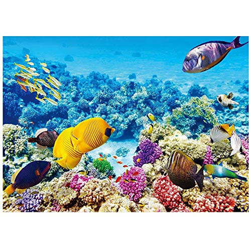 1000 Pieces Jigsaw Puzzles for Adults Underwater World Jigsaw Puzzles 1000 Pieces Puzzle 75cmX50cm(29.5inX19.7in)