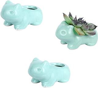 Best bulbasaur planter for sale Reviews