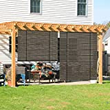 COARBOR Outdoor Roller Blinds Shades for Porch Patio Exterior Roll up...