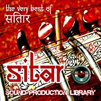 SITAR REAL - UNIQUE 24bit WAVE/NKI Multi-Layer Studio Samples Library on DVD or for download