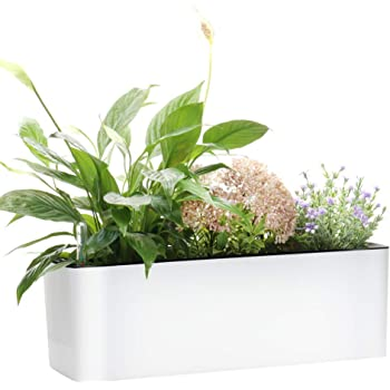 """Elongated Self Watering Planter Pots Window Box 5.5 x 16 inch with Coconut Coir Soil Indoor Home Garden Modern Decorative Planter Pot for All House Plants Flowers Herbs 1, White 5.5"""" x16"""""""