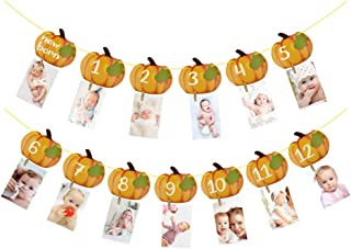 Rainlemon Pumpkin Photo Banner Fall Autumn Little Pumpkin Boy Gril 1st Birthday Party Photo Garland 12 Months Photo Prop