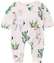 baby succulent costume