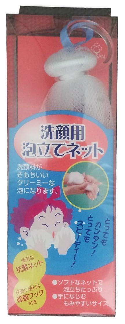 重要なライナーホールドオール洗顔用 泡立てネット 1個入