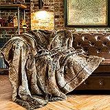 BATTILO HOME Luxury Faux Fur Warm Elegant Cozy Throw Decorative Blanket Bed Sofa Blanket (Brown, 60'x80')