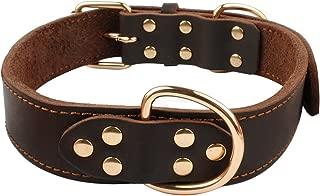 leather dog collars for dobermans