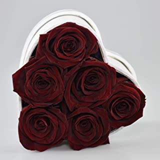 The Touch of Harmony Real Luxury Roses Preserved Flowers Unique Present Gift for Anniversary Birthday Valentines Day Mothers Day Graduation Long Lasting Lasts up to one Year White Heart Box (Wine)