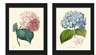 Hydrangea Botanical Print Set of 2 Beautiful Pink Blue Flowers Spring Summer Green Nature Garden Plant Home Room Decor Wal...