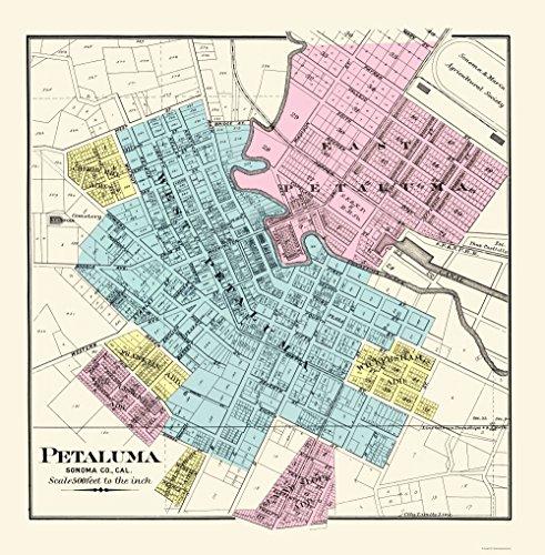 MAPS OF THE PAST Petaluma California - Thompson 1877-23.00 x 23.44 - Glossy Satin Paper