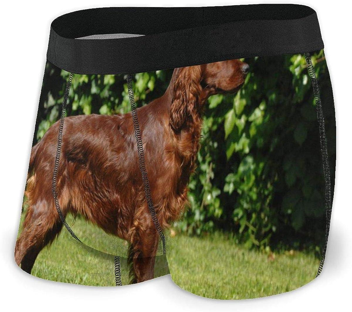 Mens Boxer Briefs Irish Setter Dog Vector Breathable Underwear