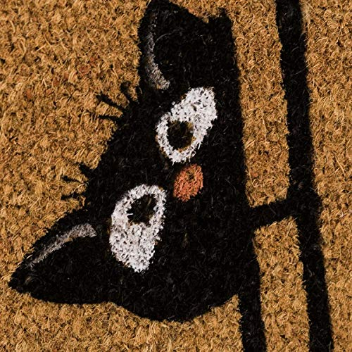 Felpudo de Gato de Fibra de Coco Natural de 40x60 cm (Home)