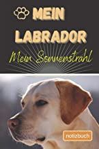 Mein Labrador Mein Sonnenstrahl Notizbuch: Liniertes Notizbuch | Hundebild auf dem Umschlag | Labrador |100 Decorative Sei...