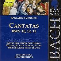 Bach: Cantatas, BWV 10, 12, 13 (Edition Bachakademie Vol 4) /Rilling by Johann Sebastian Bach (1999-01-23)
