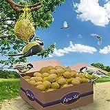 Lyra Pet® 200 x 90 g Meisenknödel mit Netz 18000 g 4 Jahreszeitenknödel Wildvogelfutter