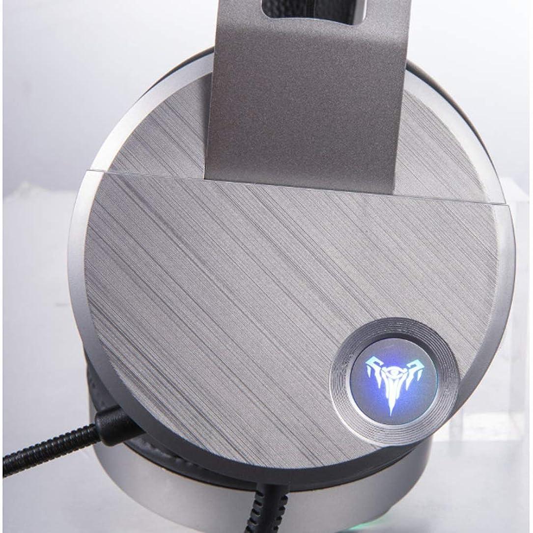 砂漠アプローチペチコートElectrost ゲームヘッドセットサラウンドステレオサウンド人間工学USB有線のヘッドホン、PC、Xbox One、PS4、Nnintedoスイッチ用 (Edition : Long mic)