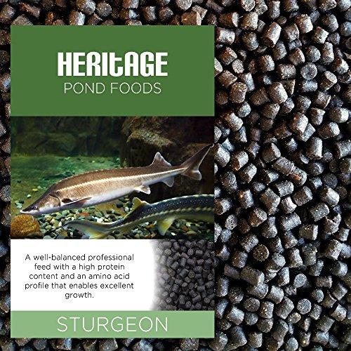 HERITAGE 10KG STURGEON STERLET FISH FOOD PELLETS PREMIUM SINKING POND FEED TENCH KOI 4-6MM (10KG)
