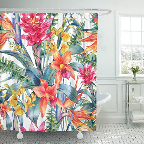 TOMPOP Shower Curtain Watercolor Vintage Floral Tropical Exotic Flowers Bird of Paradise Waterproof Polyester Fabric 72 x 72 Inches Set with Hooks