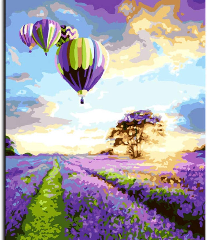 WFYY Malen Nach Zahlen Erwachsene Erwachsene Erwachsene Lavendel Mit Heißluftballon Abstrakte Puzzle Spiel Spielzeug Geschenke Artwork Für Kinder 16X20 Inch Holzrahmen B07PPPLPP9 | Langfristiger Ruf  2a7db7