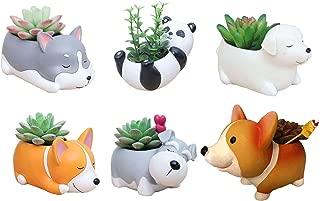 6 PCS Set Cute Cartoon Animal Corgi Husky Labrador Panda Schnauzer Shaped Succulent Cactus Flower Pot/Plant Pots/Planter/Container for Home Garden Office Desktop Decoration (Plants Not Included)