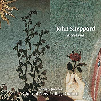 Sheppard: Media vita