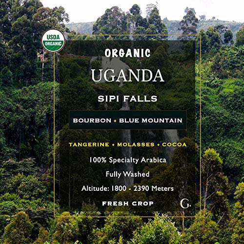 5 LB Unroasted Green Coffee Beans - Organic Uganda High Altitude Sipi Falls Single Origin - Specialty Arabica of Bourbon, Blue Mountain Variety - Washed Process - Direct Trade - Fresh Crop