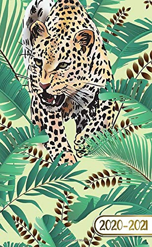 2020-2021: Tropical Jungle Two Year (24 Months) Monthly Pocket Planner & Schedule Agenda | 2 Year Organizer with Phone Book, Password Log & Notes | Exotic Leopard & Palm Leaves