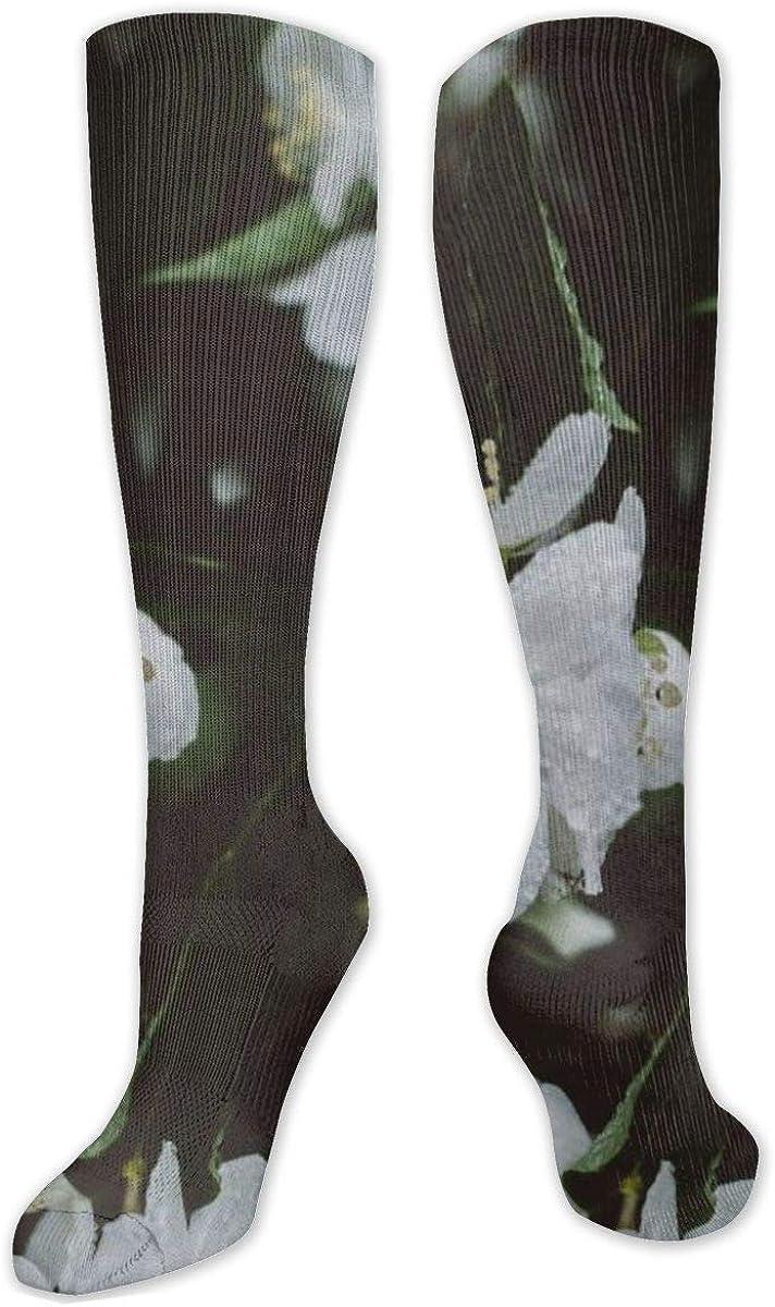 White Petaled Flowers Drops Knee High Socks Leg Warmer Dresses Long Boot Stockings For Womens Cosplay Daily Wear