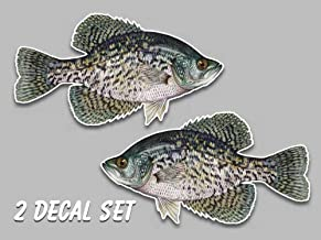 Black crappie fish vinyl decals 5.5