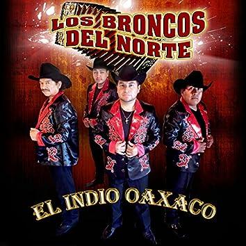 El Indio Oaxaca