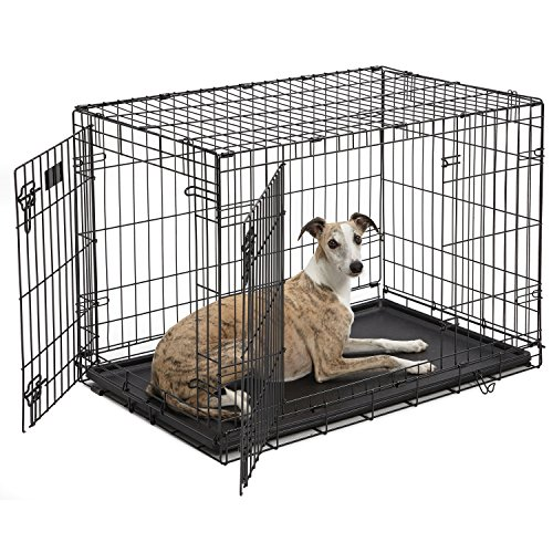 Dog Crate | MidWest iCrate 36 Inches Double...