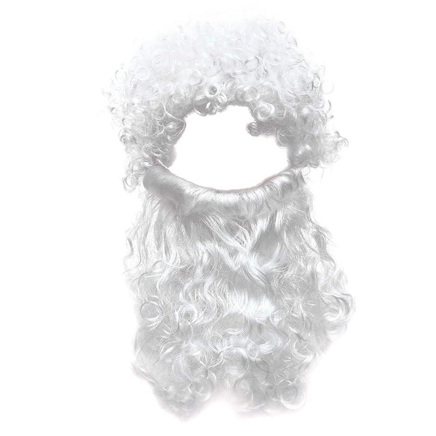 モルヒネ南方の血色の良いBeaupretty 2本の男性のハロウィンコスチュームコスプレ波状のイエスの髪の毛の髪セットひげセットホワイト