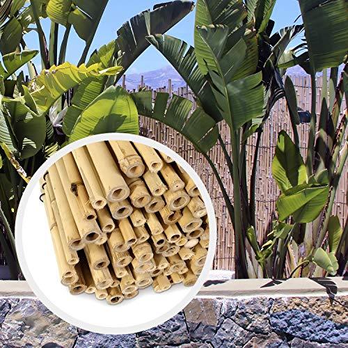 HAPPERS Valla Bambú Natural para Jardín o Terraza. Rollo de cañas de 100cm x 200cm