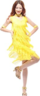 Women's Latin Dance Dress Tassels Ballroom Halloween Costumes
