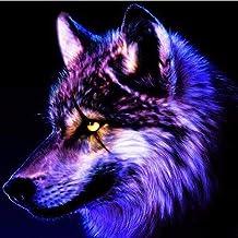 El bordado de diamantes cuadrado completo se vende rompecabezas de mosaico de diamantes de imitación mirando al lobo decoración de pintura de diamantes hogar