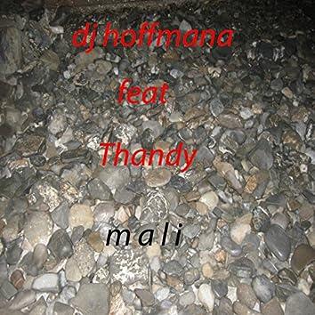 Mali (feat. Thandy)