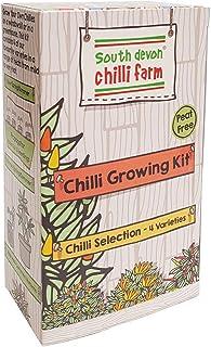 Chilli Growing Kit Chilli-Anbauset, von den Chilli-Experten der South Devon Chilli-Farm in England, in Geschenkbox
